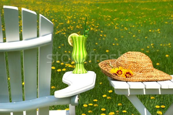 Adirondack chair on the grass  Stock photo © Sandralise