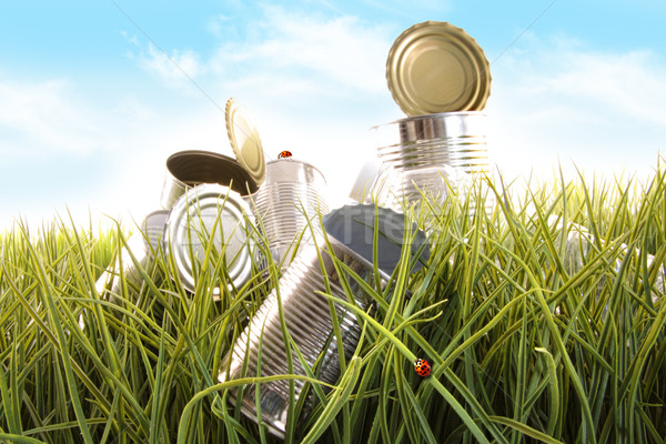 Forgotten empty cans and bottles in grass Stock photo © Sandralise
