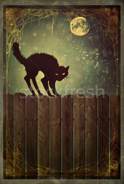 Fekete macska kerítés klasszikus néz régi fa éjszaka Stock fotó © Sandralise