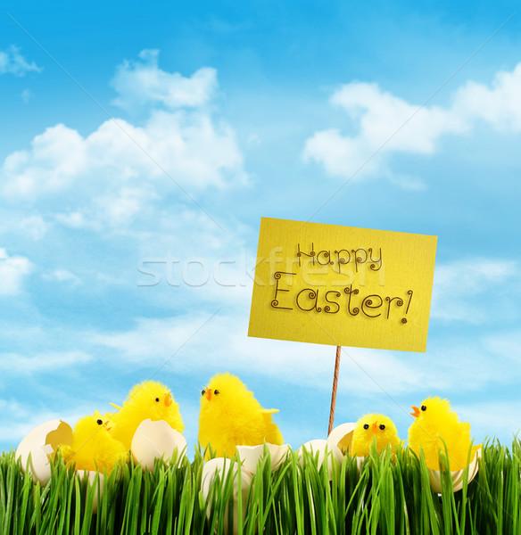 Húsvét felirat égbolt kék ég tojás Stock fotó © Sandralise