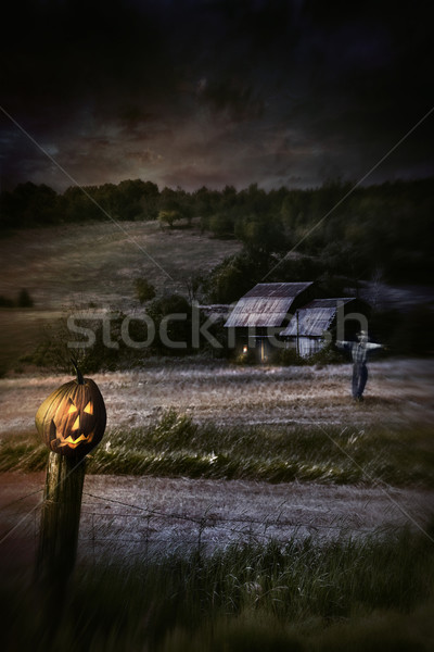 Eerie night scene with Halloween pumpkin on fence Stock photo © Sandralise
