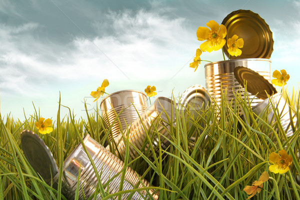 Discarded aluminium cans in tall grass Stock photo © Sandralise