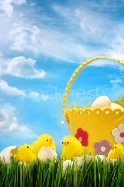 Easter chicks against sky background Stock photo © Sandralise