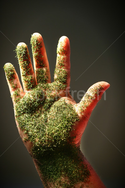 Open hand with green substance, close-up Stock photo © Sandralise