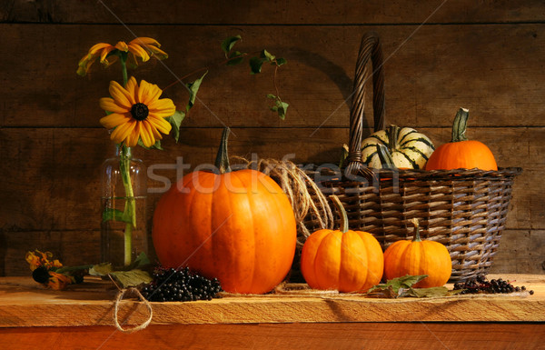 Autumn still life Stock photo © Sandralise