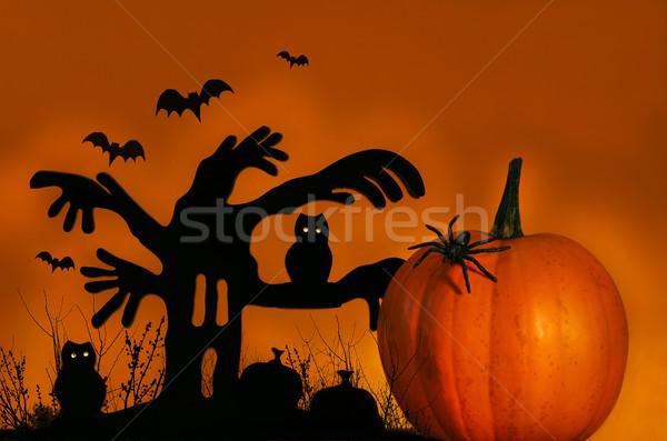 Spooky tree with pumpkin Stock photo © Sandralise