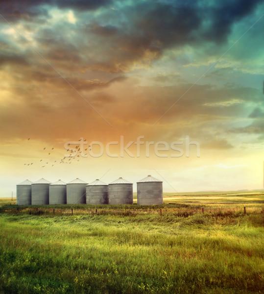 Préri gabona késő nyár épület naplemente Stock fotó © Sandralise