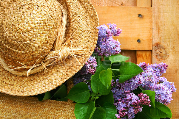 Freshly picked lilacs Stock photo © Sandralise