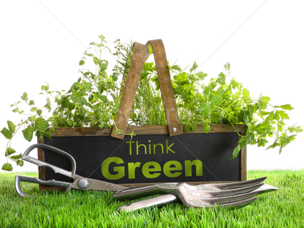 Garden box with assortment of herbs and tools Stock photo © Sandralise