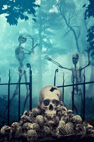 Skulls and Skeletons in creepy graveyard Stock photo © Sandralise