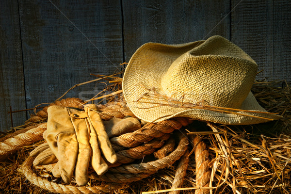 Straw hat with gloves on a bale of hay Stock photo © Sandralise