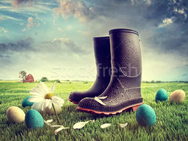 Rubber boots with easter eggs on grass Stock photo © Sandralise