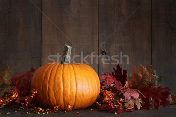 Harvested pumpkin and berries on wood  Stock photo © Sandralise