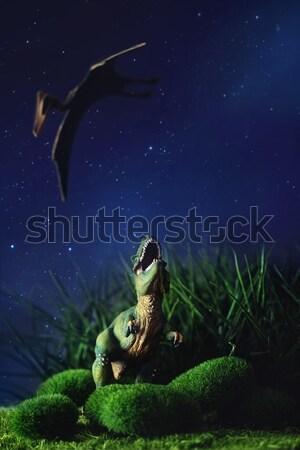 Tyrannosaurus fighting with a prehistoric flying bird Stock photo © Sandralise