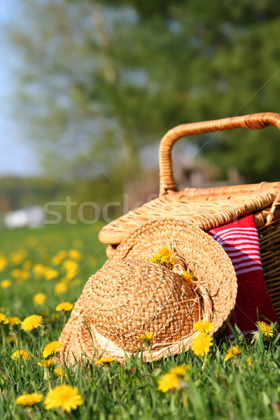 A picnic on the grass with wicker basket and sun hat  Stock photo © Sandralise