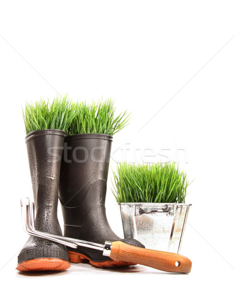 Rubber boots with grass in pot and tool  Stock photo © Sandralise
