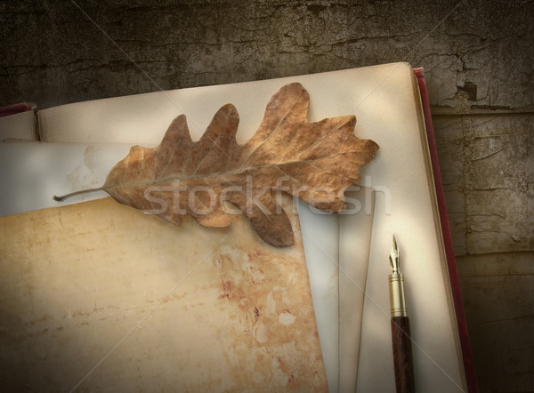 Vintage writing paper with pen on wood  Stock photo © Sandralise