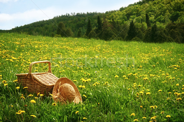 Picnic basket in the grass Stock photo © Sandralise