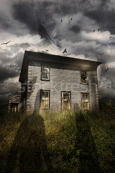 Old abandoned house with flying ghosts Stock photo © Sandralise