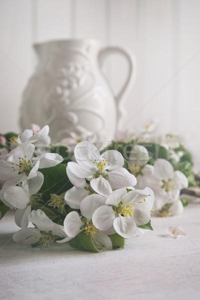 Mela fiore fiori brocca ancora vita fiore Foto d'archivio © Sandralise