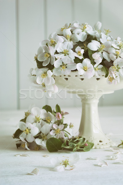 Still life with spring apple blossoms in vase Stock photo © Sandralise