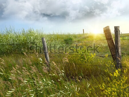 Old country fence on the prairies Stock photo © Sandralise