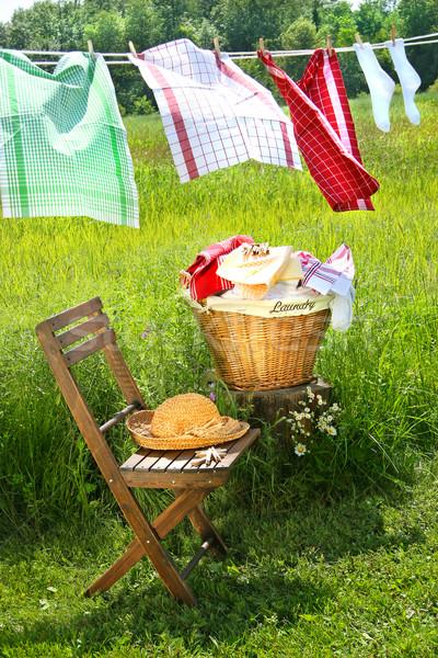 Foto d'archivio: Lavare · giorno · piatto · asciugamani · estate · verde