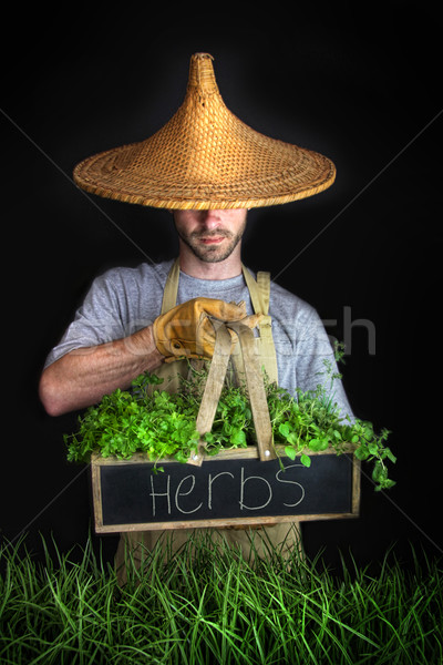 Man with Asian hat gardening  Stock photo © Sandralise