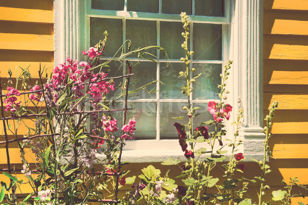 Old cottage with summer garden Stock photo © Sandralise