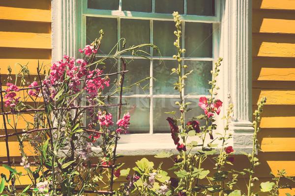 Velho casa de campo verão jardim completo flores Foto stock © Sandralise