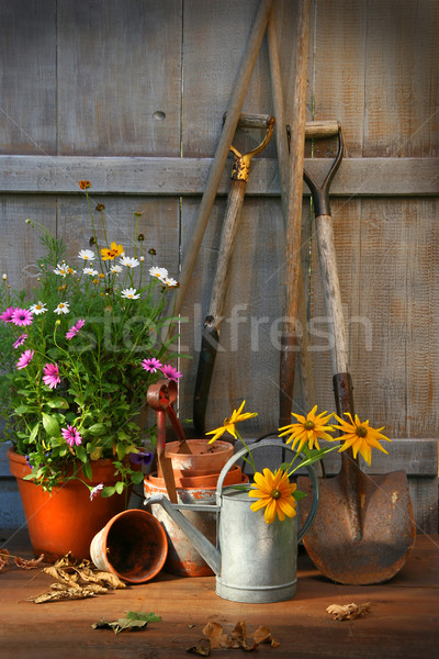 Bahçe araçları çiçek çim çalışmak ışık Stok fotoğraf © Sandralise