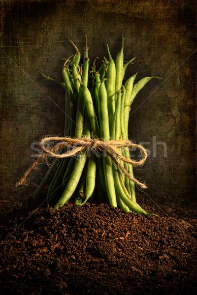 Vers groene bonen grunge koord voedsel gezondheid Stockfoto © Sandralise