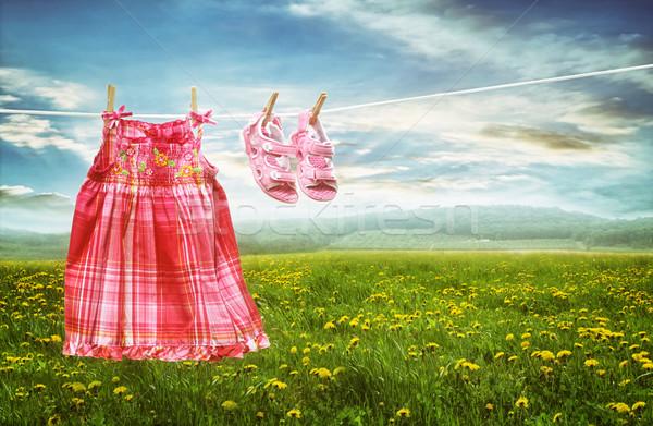 Ruha szandál ruhaszárító mezők pitypangok nyár Stock fotó © Sandralise