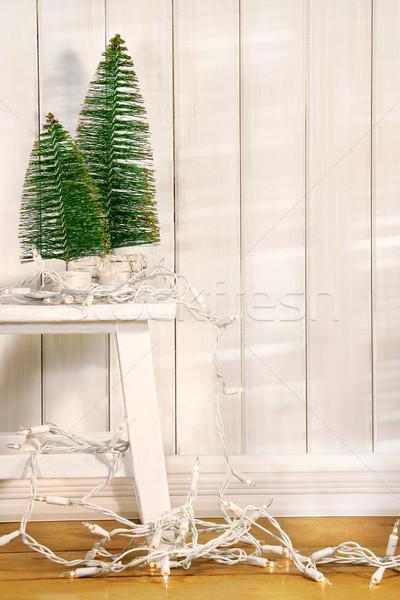 Biały drzewo światła wiszący starych ławce Zdjęcia stock © Sandralise