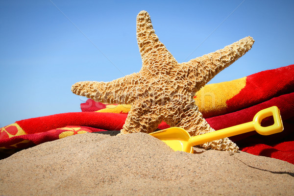 Big starfish in the sand with shovel and beach towel  Stock photo © Sandralise