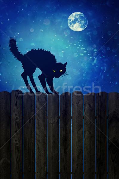 Gato negro madera cerca noche madera vieja ojos Foto stock © Sandralise