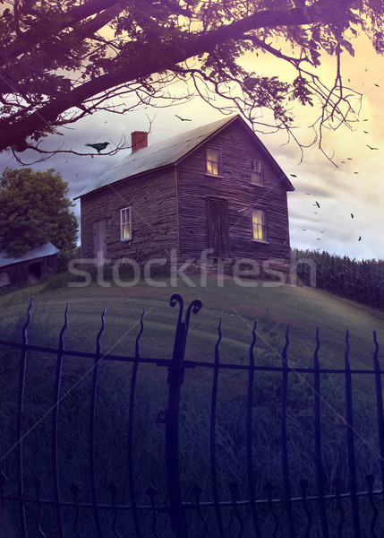 Abandoned haunted house on the hill Stock photo © Sandralise