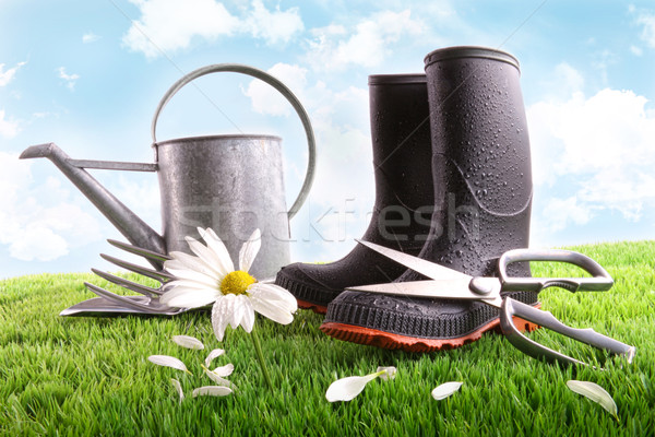 Boots with watering can and daisy in grass  Stock photo © Sandralise