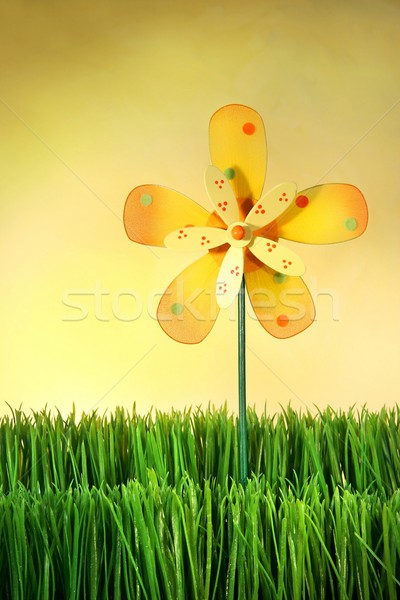 Photo stock: été · amusement · herbe · multicolore · moulin · à · vent · jouet