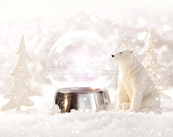 Snow globe in  winter scene Stock photo © Sandralise