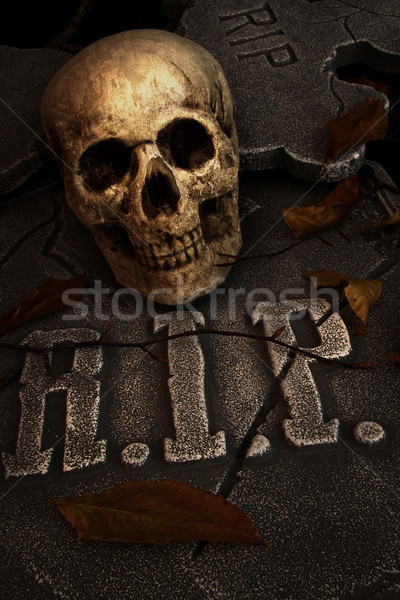 Hátborzongató koponya sírkő temető égbolt fa Stock fotó © Sandralise