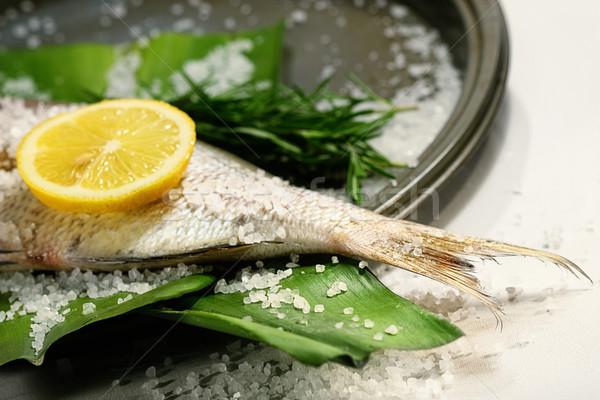 Fish tale with lemon, salt and herbs Stock photo © Sandralise