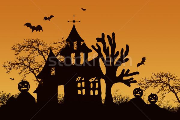 Haunted halloween house with bats  Stock photo © Sandralise