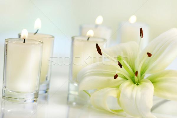Photo stock: Lily · fleur · bougie · pâle · santé · beauté