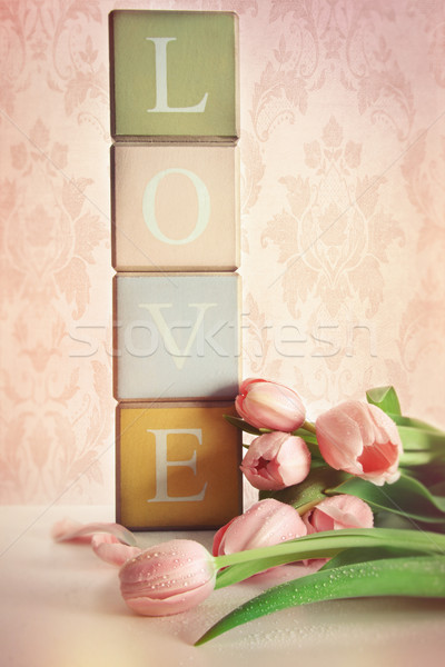 Colored blocks with tulips with vintage look Stock photo © Sandralise