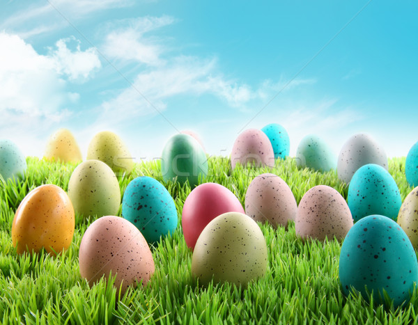 Colorful Easter eggs in a field of grass Stock photo © Sandralise