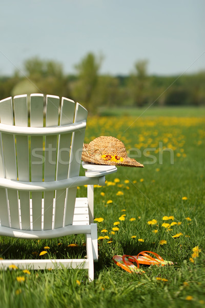 Adirondack chair  Stock photo © Sandralise