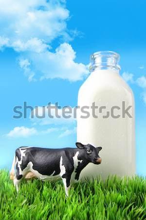 ストックフォト: ミルク · ボトル · 草 · 青空 · 食品 · 自然