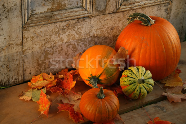 Pumpkins and gourds at the door Stock photo © Sandralise