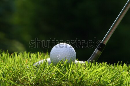 Stock photo: Golf club with ball on grass